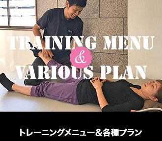 トレーニングメニュー、各種プラン